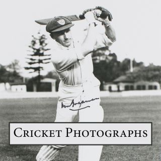 Cricket Photographs