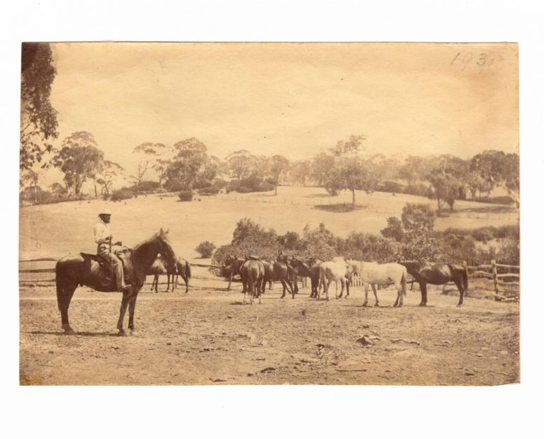 A group of four nineteenth-century photographs featuring Thomas Walker Higgins, a pioneer of Currency Creek and Middleton, about 80 kilometres south of Adelaide. Thomas Walker HIGGINS.