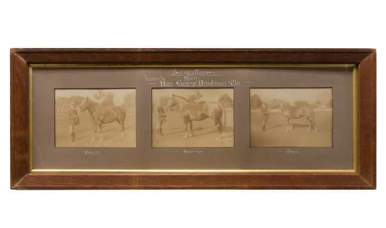 'Suffolk Punch Mares, Imported by Hon. George Brookman MLC'. A triptych of three original sepia-toned gelatin silver photographs in the original mount (with calligraphic captions in white ink) and frame (external dimensions 345 × 875 mm). Each image (visible size approximately 145 × 200 mm) shows Sir George Brookman (1850-1927, mining speculator, politician and philanthropist) holding the lead rope of one of the three Suffolk Punch mares he imported for his stud farm at O'Halloran Hill around the middle of 1905. The horses are identified as Beauty, Snowdrop and Molly. Sir George BROOKMAN.