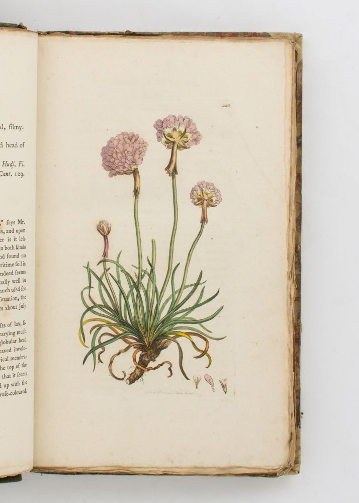 English Botany, or, Coloured Figures of British Plants .. Volume IV. James SOWERBY, Sir Edward SMITH.