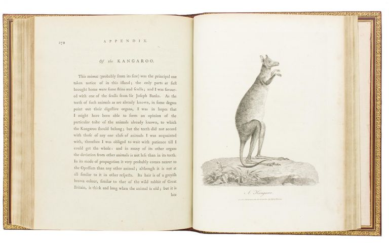 Journal of a Voyage to New South Wales, with Sixty-five Plates of Nondescript Animals, Birds, Lizards, Serpents, Curious Cones of Trees and other Natural Productions. John WHITE.