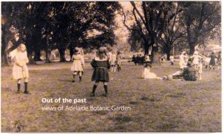 Out of the Past. Views of Adelaide Botanic Garden. A Series of Edwardian Era Postcards. Adelaide...