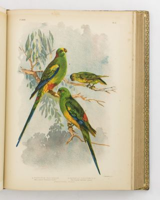 Birds of Australia. Comprising Three Hundred Full-Page Illustrations, with a Descriptive Account of the Life and Characteristic Habits of over Seven Hundred Species