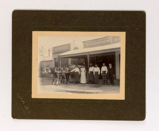 An Edwardian photograph of the staff of a butcher's shop, possibly in Woodside in the Adelaide Hills. Equal Opportunity.