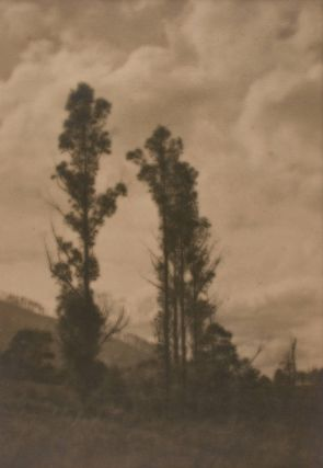 'The Foothills, Warburton'. A vintage gelatin silver photograph (visible image size 353 × 244...