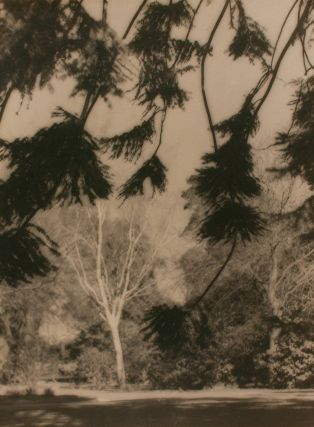 Parklands. A vintage gelatin silver photograph (float-mounted, image size 295 × 222 mm) on the...