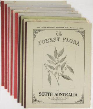 The Forest Flora of South Australia. John Ednie BROWN