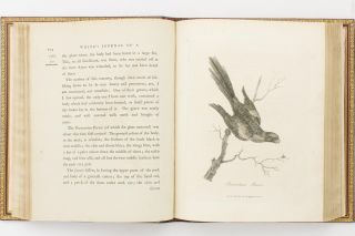 Journal of a Voyage to New South Wales, with Sixty-five Plates of Nondescript Animals, Birds, Lizards, Serpents, Curious Cones of Trees and other Natural Productions