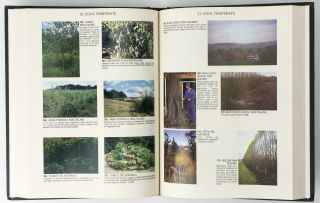 Permaculture. A Designers' Manual