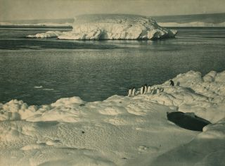 'An Ice Capped Islet'. Australasian Antarctic Expedition, Frank HURLEY