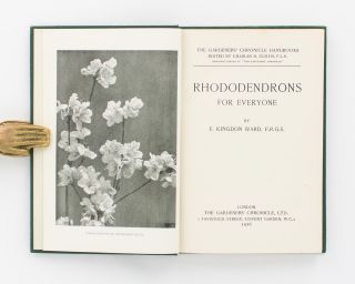 Rhododendrons for Everyone
