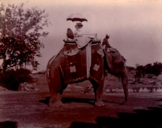 A large collection of Edwardian snapshots of travels in India, China and Central Asia. China...