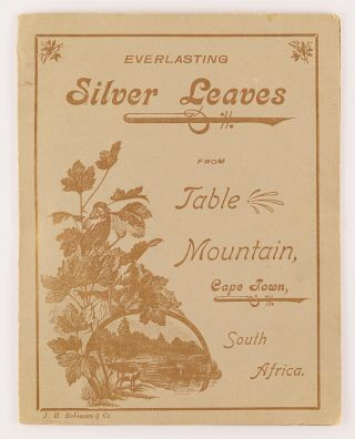 Everlasting Silver Leaves, from Table Mountain, Cape Town, South Africa [cover title]