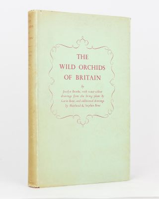 The Wild Orchids of Britain. Jocelyn BROOKE